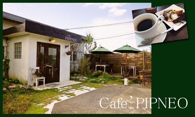 pipineo2